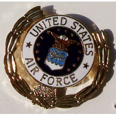 Air Force Wreath Pin
