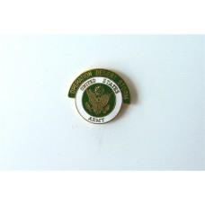 Army Desert Storm Pin