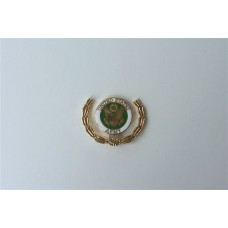 Army Wreath Pin